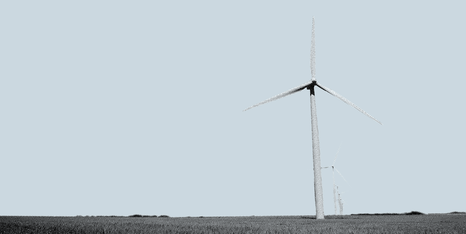 What's the real price of wind energy?